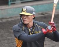 【阪神】糸井もサンズらと競争 矢野監督が奮起促す