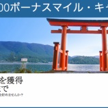 『デルタニッポン500が延長されたので2018年もタダで2万マイル貰おうと思う』の画像