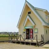 『6/20(土)開催!「とうもろこし&枝豆祭り」~食の広場 ピアッツァ』の画像