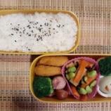 『アメリカdeお弁当⑩』の画像