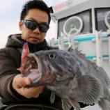 『1月27日 釣果 スーパーライトジギング SLJ 本命クロソイは最大54センチ 50アップ4匹』の画像