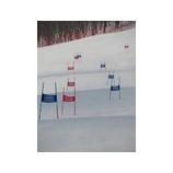『ポールを滑ったことのないスキーヤーの為のポール入門キャンプ2/13〜14』の画像