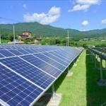政府「再生エネ(太陽光や風力)の固定買い取り制の縮小・廃止も検討する」