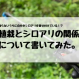 『自らシロアリを寄せ付けている!? 植栽とシロアリの関係について書いてみた。』の画像