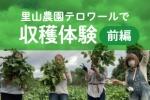 里山の農園「テロワール」で秋の味覚をまるごと収穫体験!〜農学ラボで農業が学べる〜!【前編】