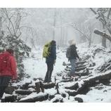 『なごり雪』の画像