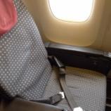 『JAL Yクラス搭乗記[HND→ITM]サファイアチャレンジ④』の画像