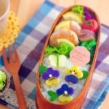 『お花のクッキー型で作るパンジーと蝶のお弁当』の画像