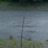 『小鮎釣り11安曇川2021.07.10』の画像