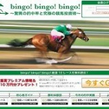 『【リアル口コミ評判】bingo!bingo!bingo!(ビンゴ!ビンゴ!ビンゴ!)』の画像
