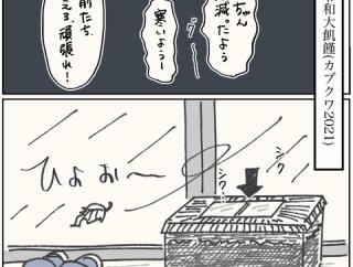 令和の大飢饉〜カブクワ2021〜