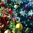 『クリスマスツリー☆』の画像
