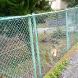 『旧公務住宅のフェンスが…治安問題も懸念』の画像