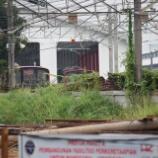 『週刊マンガライレポートVol.223』の画像