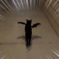 【ネコ】 街で事件でもあったのかな? → 可愛いバットマンが出動する…