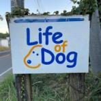 Life of Dog「一緒がいいね!」