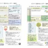 『【保育】ビイバ!夏のカレンダー』の画像