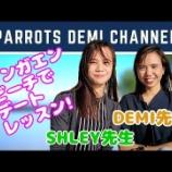 『パロッツ君動画リスト②』の画像