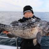 『1月26日 釣果 スーパーライトジギング SLJ 14品目達成』の画像