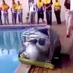 【動画】自動膨張式の救命ボートを展開してみた!想像以上にデカすぎてこりゃ大変! [海外]