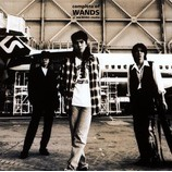 『CD Review Extra:WANDS 全ベストアルバムレビュー』の画像