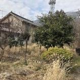 『新施設 みかん畑に 建つ予定』の画像