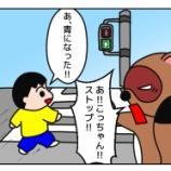 『たぬさんちが交通ルールに厳しい訳』の画像