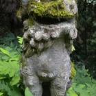 『Nancyのつぶやき(京羅木山) Aug.27(Fri) 2010』の画像