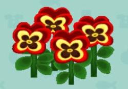 【ポケ森】パンジーの簡単な作り方が判明!?遺伝子の優先順位が大事らしい!