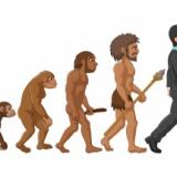 なんで人間だけがここまで進化出来たんや