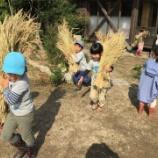 『脱穀』の画像