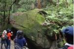 どなたか!源氏の滝に、タオルとケータイケースお忘れですよ!