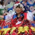第38回浅草サンバカーニバル2019 その22(エスコーラ・ヂ・サンバ・サウーヂ)