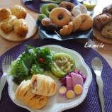 『中級 編み込みドッグ、ドーナツ 天然酵母 カイザーゼンメル、ハーブチーズ』の画像