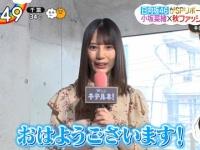 【日向坂46】「zip × 日向坂」最終日はこさかな!!DAIGOもデレデレwwwwwwww