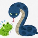 """【中国】 ヘビの""""解毒酒""""販売中の男性、蛇にニワトリをかませて効果を示そうとし誤って自分が噛まれる"""