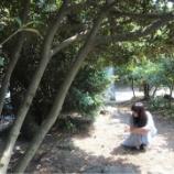 『【乃木坂46】鈴木絢音『いただいたチャンスを掴むことも、2期生に選抜のバトンを繋ぐことも出来ませんでした。』』の画像