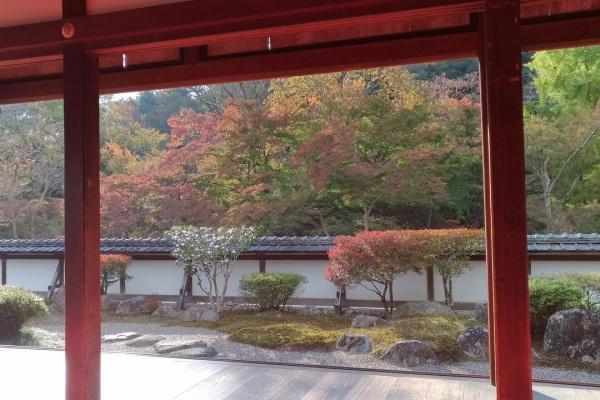 奈良 市 天気