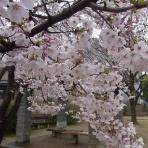 銚子の散歩道