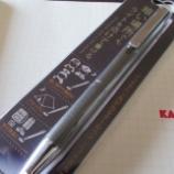 『これは買い! 絶対に買い! ゼブラ ライト付きボールペン「ライトライト」』の画像