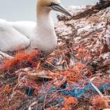 『安倍首相表明:海洋プラスチックごみ対策で世界を主導する。』の画像