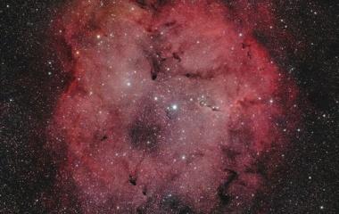 『FSQ-106EDで捉えたケフェウス座のIC1396散光星雲 ☆彡』の画像