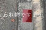 どなたか赤いペラペラのやつ忘れてますよ〜!〜郡津駅の自転車置場の近く〜
