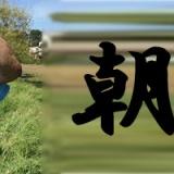朝練!!東久留米の落合川での写真