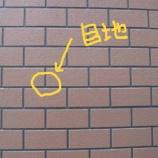 『タイルのメジ』の画像