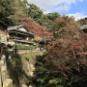 紅葉狩りをしながら箕面の大滝へ