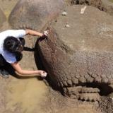 【巨大生物】干上がった川底から2万年前の重装甲哺乳類を発見