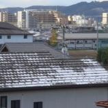『うわっ、雪だ!』の画像