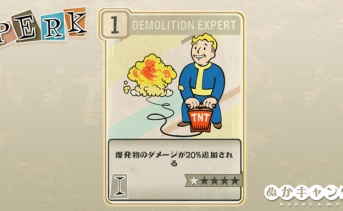 Fallout 76:Demolition Expert(Intelligence)