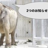 『2つのお知らせ』の画像